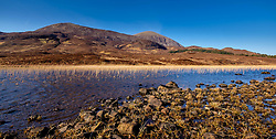 Reed beds on Loch Cill Chriosd, Isle of Skye, Scotland in early spring<br /> <br /> (c) Andrew Wilson | Edinburgh Elite media