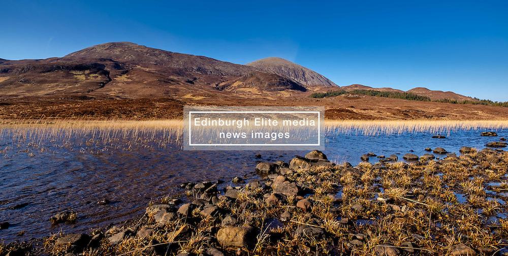 Reed beds on Loch Cill Chriosd, Isle of Skye, Scotland in early spring<br /> <br /> (c) Andrew Wilson   Edinburgh Elite media