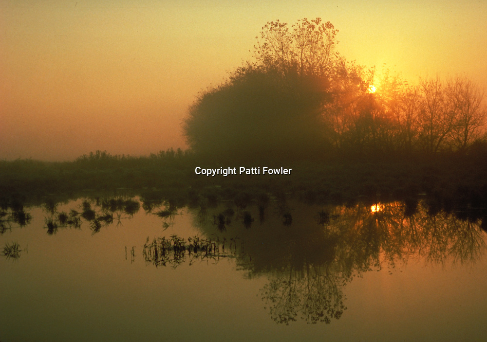 sunrise over pond with reflection