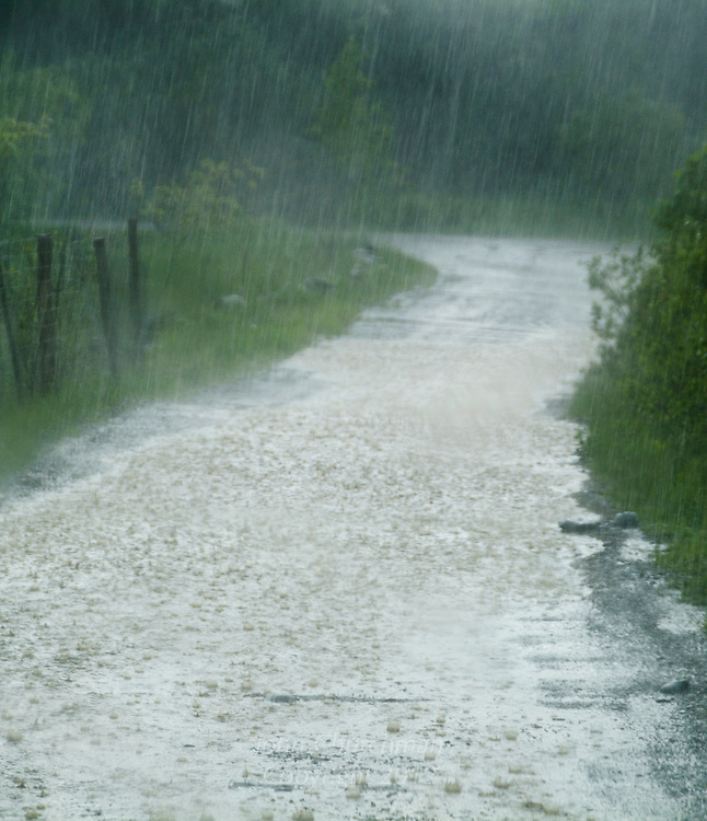 Spring downpour