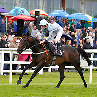 Clear Spring and Nicky Mackay winning the 7.35 race