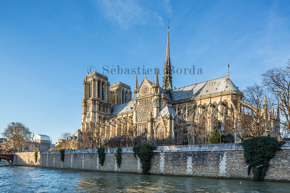Cathédrale Notre-Dame de Paris // Notre-Dame de Paris cathedral