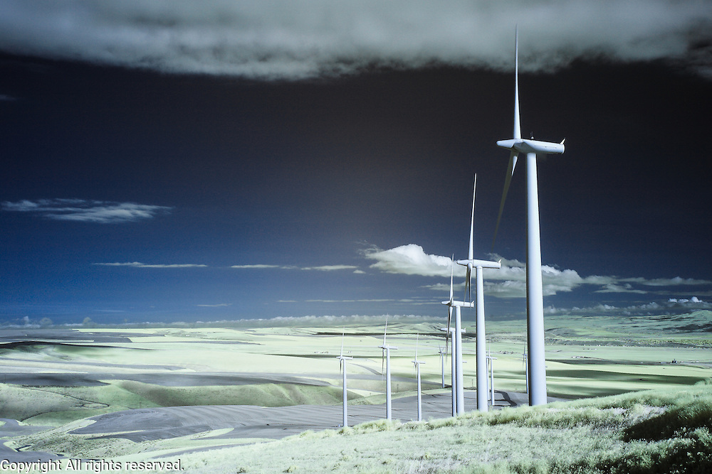 Infrared (IR) image - Eastern Washington wind farm.  This photo was made in Kennewick, near Finlay, WA.  I like the repetition of the windmills and the hard shadows that they cast.  I used the blue/red channel swap for this because I liked the contrast that it added between the windmills and the sky.
