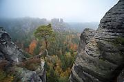 Gansfelsen, Wehlgrund, Blick von der Bastei, Sächsische Schweiz, Elbsandsteingebirge, Sachsen, Deutschland | view on rocks from Bastei, Saxon Switzerland, Saxony, Germany