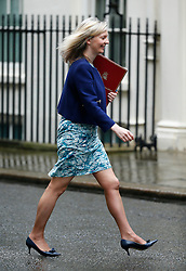 © Licensed to London News Pictures. 10/05/2016. London, UK. Secretary of State for Environment, Food and Rural Affairs LIZ TRUSS arrives at Number 10 Downing Street in Westminster, London for cabinet meeting. Photo credit: Tolga Akmen/LNP