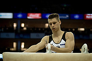 Lukas Dauser of Germany (GER) prepares for his Pommel horse routine on his way to a Bronze Medal  during the iPro Sport World Cup of Gymnastics 2017 at the O2 Arena, London, United Kingdom on 8 April 2017. Photo by Martin Cole.