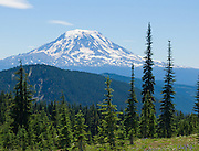 Mount Adams (12,281 feet / 3743 meters elevation), the second-highest mountain in Washington, is a potentially active stratovolcano in the Cascade Range. Photo is taken from Goat Rocks Wilderness Area, Gifford Pinchot National Forest, Washington, USA. Hike the scenic loop to Snowgrass Flat and Goat Ridge (13 miles, with 3180 feet total gain) in Goat Rocks Wilderness Area, Gifford Pinchot National Forest, Washington, USA.