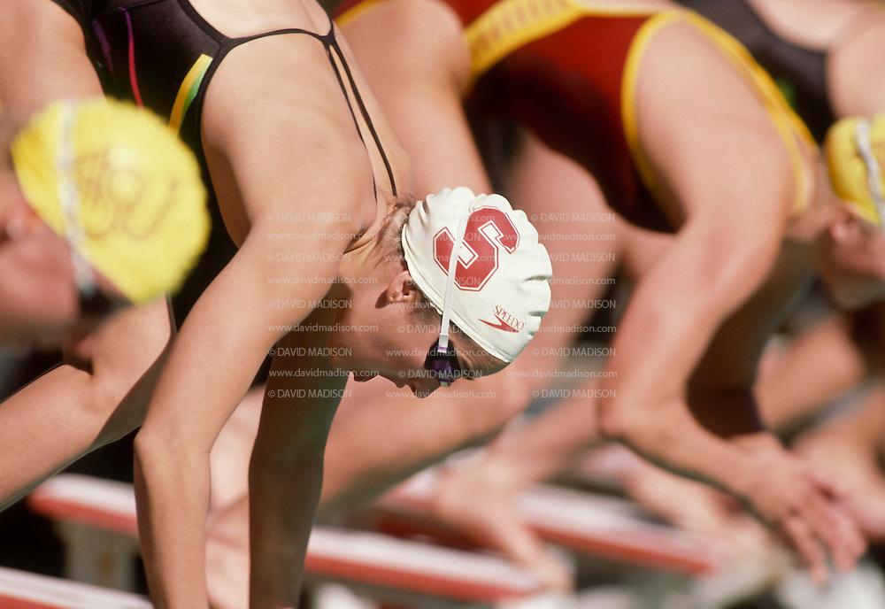 PALO ALTO, CA -  JANUARY 1990:  Janet Evans of Stanford University dives off the starting blocks during an NCAA swimming event in January 1990 at deGuerre Pool at Stanford University in Palo Alto, California.   (Photo by David Madison/Getty Images) *** Local Caption *** Janet Evans