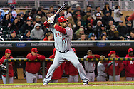 Albert Pujols #5 of the Los Angeles Angels bats during a game against the Minnesota Twins on April 16, 2013 at Target Field in Minneapolis, Minnesota.  The Twins defeated the Angels 8 to 6.  Photo: Ben Krause