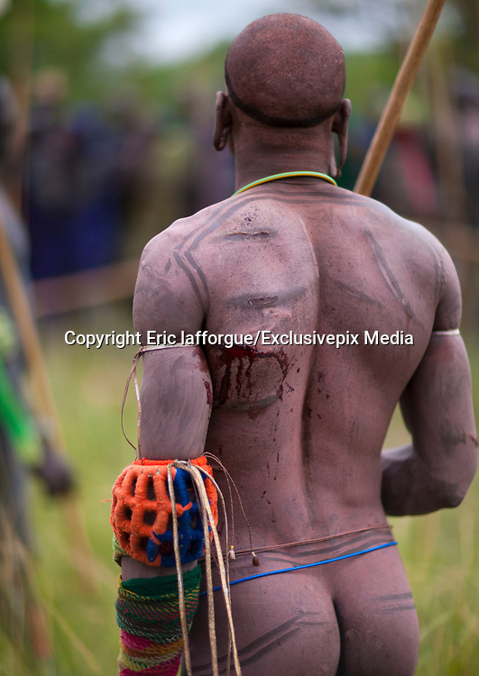 STICK FIGHTING DAY IN SURI TRIBE - ETHIOPIA<br /> <br /> Donga stick fights take place after the harvests, the Surmas count days owing to knots on a long stem of grass or jags on the trunk of a tree dedicated to that specific use. Each knot or jag representing a single day, it means that if the bark of the tree is cut with 8 jags for example, the Donga will take on the 8th day of the month.<br /> <br />  Before a Donga, some Suri drink the fresh blood of their cattle during the Blood meal ritual. It consists in making a small incision in the cow's carotid artery with a special sharp arrow in order ro make it bleed almost two liters of its bloodThe warrior has got to drink the entire content in one as blood coagulates quickly. Sometimes warriors do not manage to drink all of the blood contained in the calabash in one mouthful, and vomit all the blood they swallowed .Surma believe the cow's blood is full of vitamins that enable warriors to be fit.<br /> <br /> The warriors stop when crossing a river in order to wash themselves, before decorating their bodies for the fight. They decorate themselves by sliding the fingers full of clay on the warrior's bodies. This dressing up and decoration is meant to show their beauty and virility and thus catch the women's attention.<br /> Body paintings are also especially made during the long periods spent in the camps where the cattle is kept by young men and women. These camps are located far away from the village and the pratice of body painting is an informal and play event seen as an expression of liberty and independance for these young people. Body paintings unfortunately show the increasing impact of foreign tourists. Suri people have developed and created new body paintings as well as new dress codes in order to attract tourists. They have understood that foreigners would be more eager to take pictures from them with such decoratives paintings and ornaments, and to pay for it. A few years ago, Suri boys started to disguise