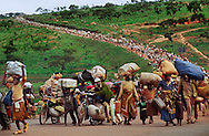 Rwandan Hutu refugees with as many possessions as they can carry trudge along a highway near Benaco Junction in Tanzania.They had tried to flee further away from Rwanda, into Tanzania, but had been turned back by Tanzanian soldiers. Several of the refugees said they would walk all the way to Kenya or Malawi just so they could avoid returning to Rwanda.
