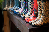 A line of multi-patterned rainboots waits outside an oceanside home