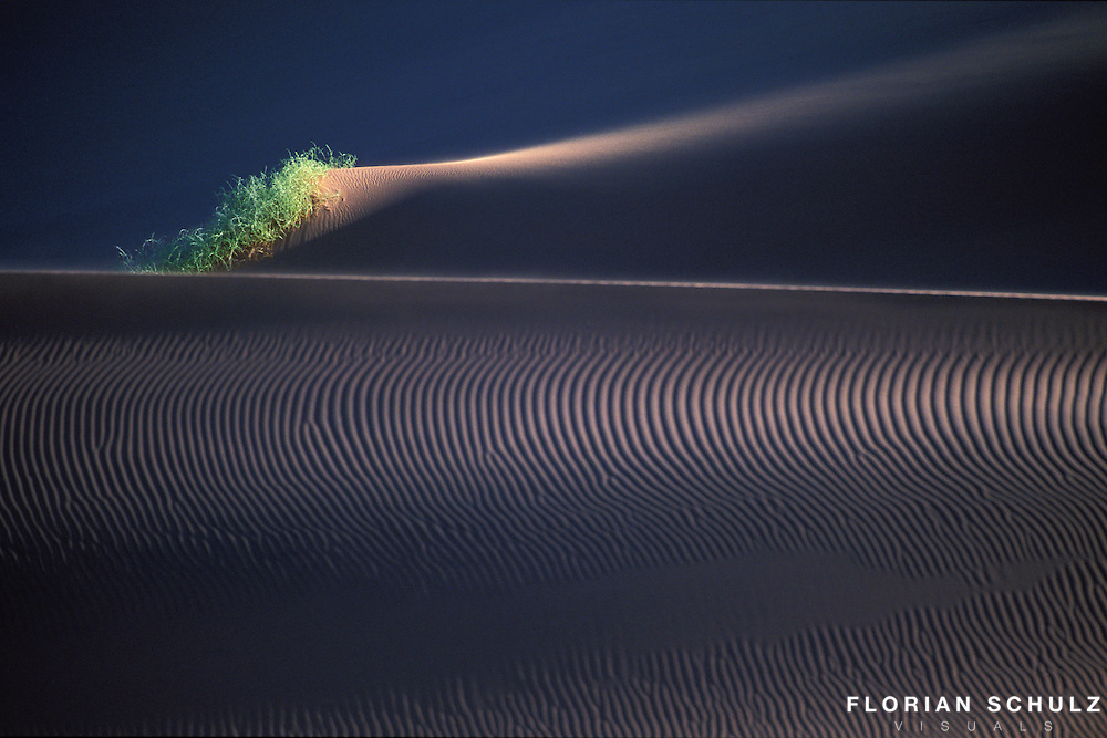 Highly Honored in the category &quot;ART in NATURE&rdquo; by the NATURE&acute;S BEST PHOTOGRAPHY AWARDS 2004.<br />
