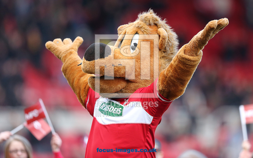 Picture by Paul Gaythorpe/Focus Images Ltd +447771 871632.16/03/2013.Middlesbrough mascot 'Roary' before the npower Championship match at the Riverside Stadium, Middlesbrough.