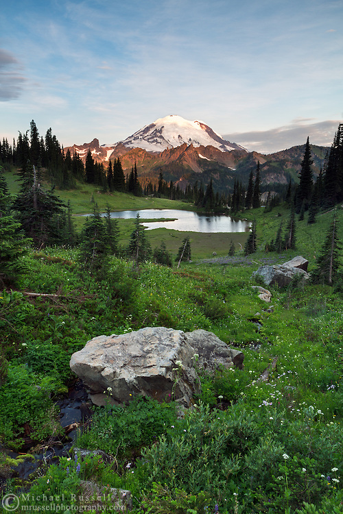 Early morning sun lights up Mount Rainier from above Upper Tipsoo Lake in Mount Rainier National Park, Washington State, USA