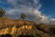 Storm above sandstone outcrop, with juniper, northwestern New Mexico, © 2012 David A. Ponton