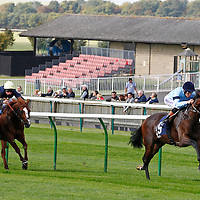 Newmarket 27th September
