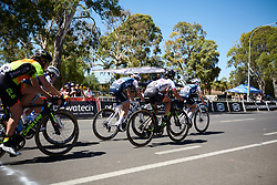 Tayler Wiles (USA) and Ruth Winder (USA) lead the Trek Segafredo sprint train alongside Alé Cipollini at Santos Women's Tour Down Under 2019 - Stage 4, a 42.5 km road race in Adelaide, Australia on January 13, 2019. Photo by Sean Robinson/velofocus.com