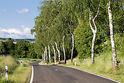 Landstraße bei Schotten, Vogelsberg, Hessen, Deutschland | country road near Schotten, Vogelsberg, Hesse, Germany