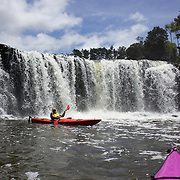 Tourists Kayaking at Haruru Falls with Coastal Kayakers, Waitangi Beach, Paihia, Bay of Islands, New Zealand, The day's paddle includes sheltered waters of the Waitangi Estuary with time exploring the Mangrove forests and Haruru falls. Bay of Islands, North Island, New Zealand, 17th November 2010 Photo Tim Clayton.