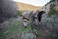 2013 MAY 15: Energy development and turkey hunting on the Roan Plateau near Rifle, CO.