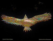 Jewelry Photography by Catherine Herrera