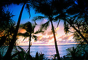 Kosrae, Federated States of Micronesia, Micronesia<br />