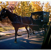 Cell phone photo of Mennonite horse buggy November 28, 2010 in Bridgewater, VA. ..Photo by Khue Bui