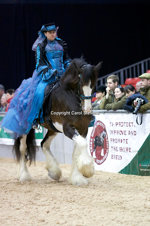 Shire Horse Society Spring Show 2017  Concours D'Elegance