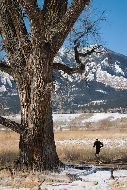 Athletes running on the South Boulder Creek Trail near Boulder, Colorado in winter