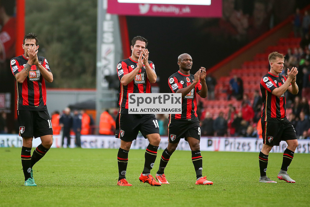 Charlie Daniels, Simon Francis, Tokelo Rantie, Matt Ritchie  During AFC Bournemouth vs Newcastle United on Saturday the 7th November 2015.