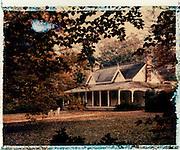 Withcombe, Mt Wilson Australia - Polaroid transfer