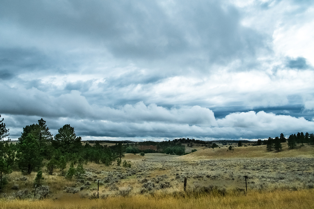 Recluse, Wyoming Cattle Range | August 23, 2014