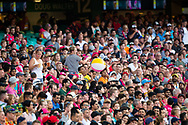 Big crowd at the Big Bash League cricket match between Sydney Sixers and Melbourne Stars at The Sydney Cricket Ground in Sydney, Australia
