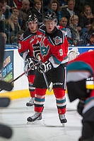KELOWNA, CANADA - OCTOBER 5:  Zach Franko #9 and Myles Bell #29 of the Kelowna Rockets look for the puck in the corner against the Portland Winterhawks at the Kelowna Rockets on October 5, 2013 at Prospera Place in Kelowna, British Columbia, Canada (Photo by Marissa Baecker/Shoot the Breeze) *** Local Caption ***