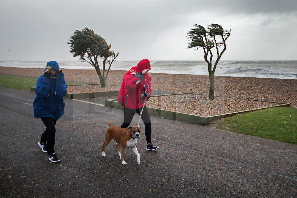 © Licensed to London News Pictures. 08/02/2016. Worthing, UK.  Women try to walk a dog on the sea front at Worthing as storm Imogen comes ashore. Photo credit: Peter Macdiarmid/LNP