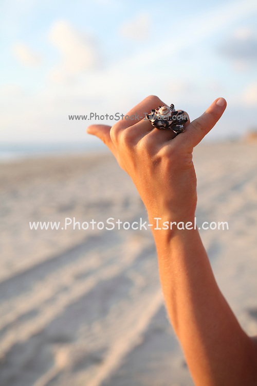 Woman's hand wears a shell ring