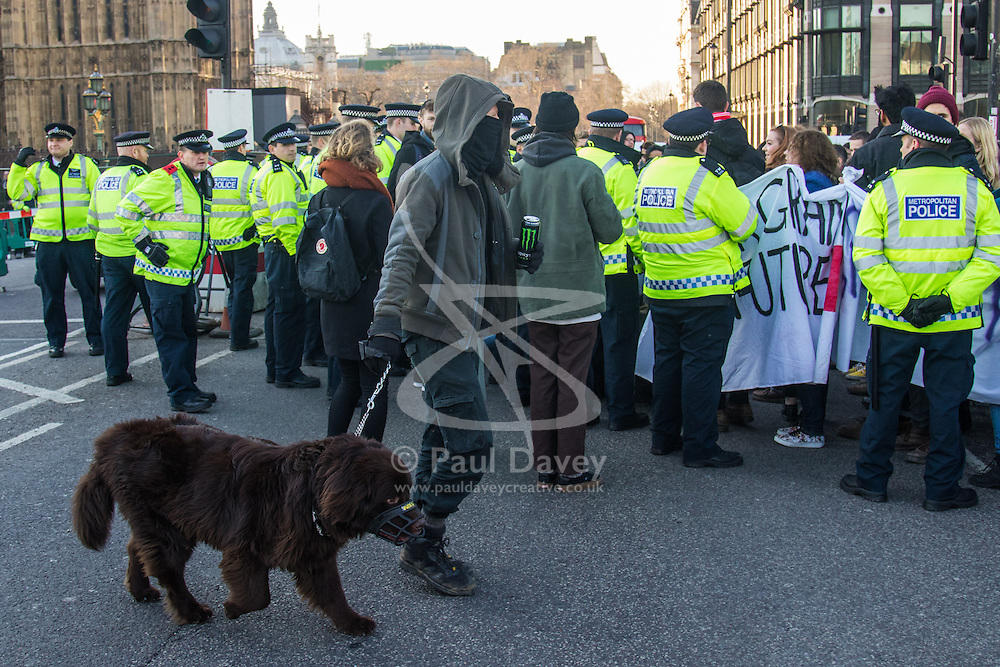 """Westminster, London, January 19th 2016. Students hold an """"emergency protest"""" in Parliament Square and later blocking Westminster Bridge, against the cutting of maintenance grants. """"It took just 18 MPs 90 minutes to scrap maintenance grants for the million poorest students, without a debate in Parliament in a backroom committee"""" PICTURED: A masked and hooded man passes the protesters as they stage a sit-in on Westminster Bridge. ///FOR LICENCING CONTACT: paul@pauldaveycreative.co.uk TEL:+44 (0) 7966 016 296 or +44 (0) 20 8969 6875. ©2015 Paul R Davey. All rights reserved."""