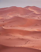"""Sunset over the great dunes in Merzouga, on the edge of the Sahara desert and borders of Morocco and Algeria. In the words of Gertrude Bell """"To wake in that desert dawn was like waking in the heart of an opal"""""""