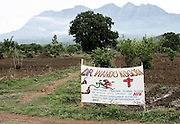 WITCH DOCTOR SIGN ON THE ROAD BETWEEN BLANTYRE AND MANGOCHI MALAWI SOUTH EASTERN AFRICA.24.11.06.PIX STEVE BUTLER