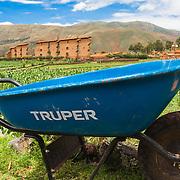 Truper - Raqchi, Peru