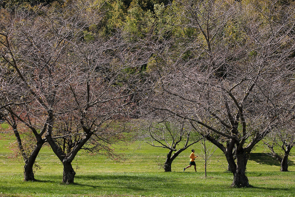 A jogger runs on a biking path on the south side of campus near Hocking River on September, 23, 2012..Photo by Chris Franz