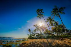 Casal curte por-do-sol na praia à sombra dos coqueiros na Praia do Forte, Bahia. FOTO: Jefferson Bernardes/ Agência Preview