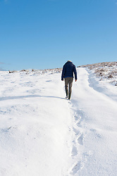© Licensed to London News Pictures. 30/01/2019. Builth Wells, Powys, Wales, UK.  A woman goes for a walk on the wild moorland of the Mynydd Epynt range near Buith Wells in Powys, Wales, UK. as snow contnues to fall in Powys, Wales, UK. credit: Graham M. Lawrence/LNP