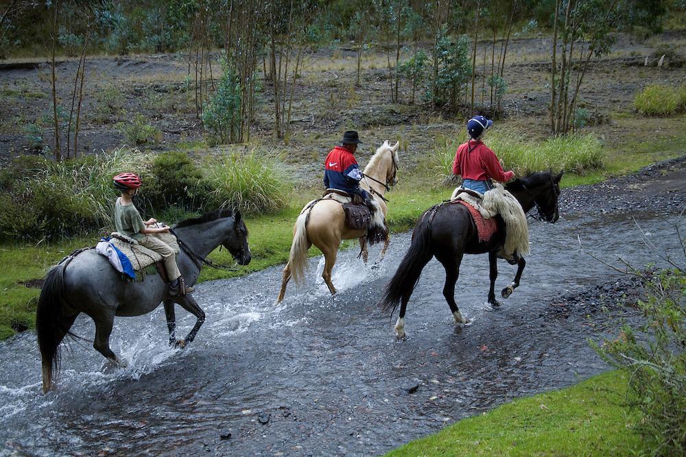South America, Ecuador, Cotapaxi, Lasso, horseback riding excursion from Hacienda San Agustin de Callo   MR, PR