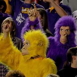 Nov 14, 2009; Baton Rouge, LA, USA;  LSU Tigers fans dress as purple and gold gorillas in the stands for a game against the Louisiana Tech Bulldogs at Tiger Stadium. LSU defeated Louisiana Tech 24-16.  Mandatory Credit: Derick E. Hingle-US PRESSWIRE