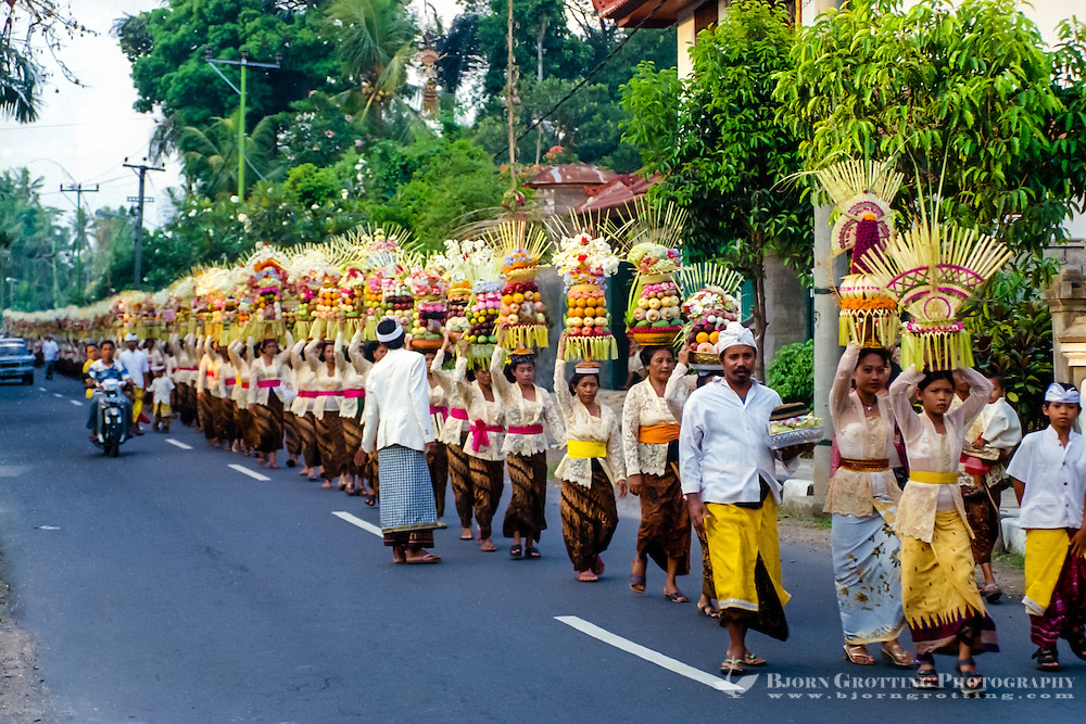 Bali, Badung, Sangeh. South of Sangeh, close to 100 women with offerings on their head. Everyone is dressed in traditional costumes. The musicians follow behind the women.