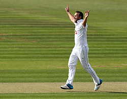 Hampshire's Sean Ervine celebrates taking the wicket of Somerset's Peter Trego - Photo mandatory by-line: Robbie Stephenson/JMP - Mobile: 07966 386802 - 21/06/2015 - SPORT - Cricket - Southampton - The Ageas Bowl - Hampshire v Somerset - County Championship Division One
