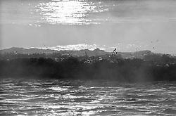 ocean waves and fog