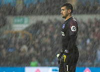 Football - 2018 / 2019 Emirates FA Cup - Sixth Round, Quarter Final : Millwall vs. Brighton<br /> <br /> Matthew Ryan (Brighton & Hove Albion) through the heavy showers that interspersed the game at The Den.<br /> COLORSPORT/DANIEL BEARHAM